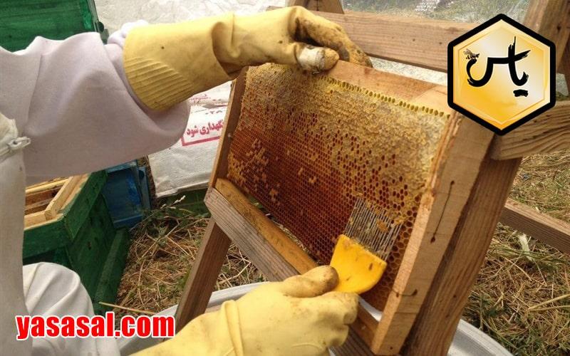 فروش لوازم زنبورداری در اصفهان