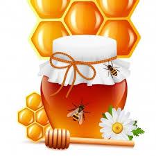 قیمت دستگاه عسل گیری