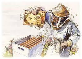 انواع لوازم زنبورداری