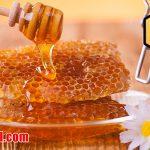 فواید عسل