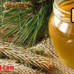 طبع انواع عسل