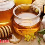 دسته بندی عسل خوب و طبیعی