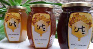 انواع ظرف عسل
