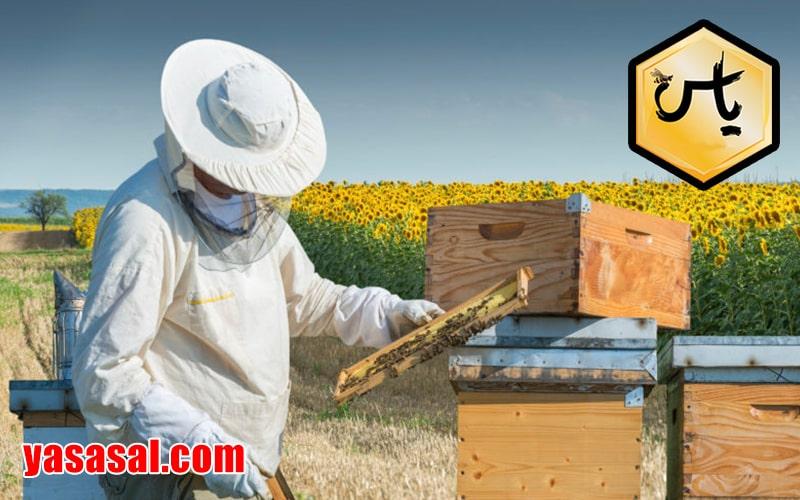 فوش تجهیزات زنبور عسل