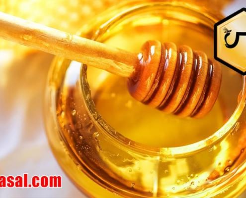 مرکز فروش عسل طبیعی